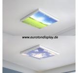 LED Deckenleuchte 9980 mit Fernbedienung Lichtfarbe/ Helligkeit einstellbar Entspanntes Design lackierter Metallrahmen